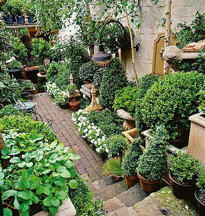 Italian garden bareo isyss for Landscaping rocks new orleans